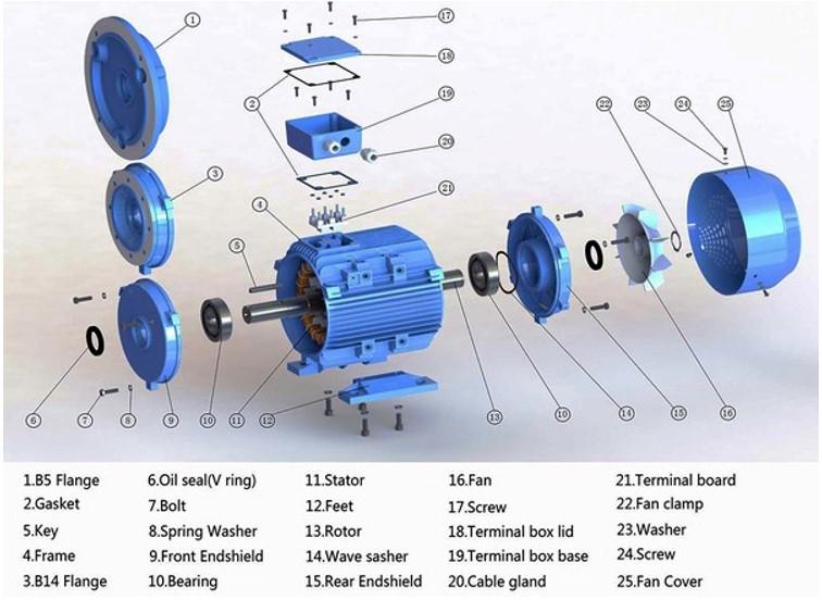 Cấu tạo của động cơ máy điện không đồng bộ 3 pha